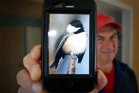 Forget Twitter. This App Actually Lets You Send Data… Via Birdsong. See How.