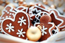 The Daily App: Martha Stewart Makes Cookies